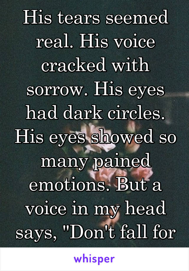 """His tears seemed real. His voice cracked with sorrow. His eyes had dark circles. His eyes showed so many pained emotions. But a voice in my head says, """"Don't fall for it."""""""