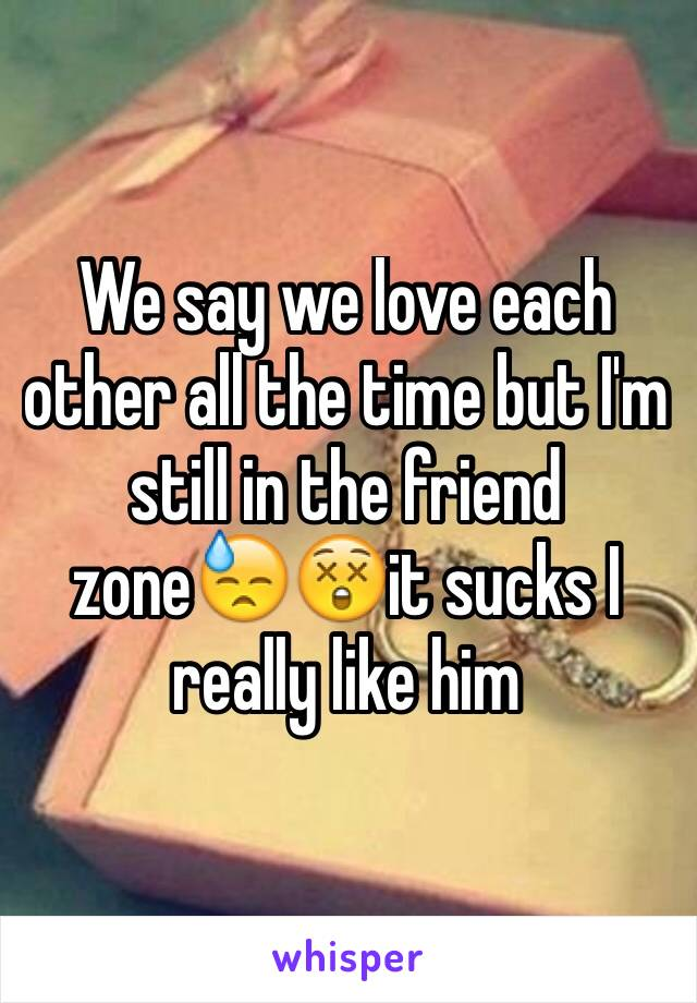 We say we love each other all the time but I'm still in the friend zone😓😲it sucks I really like him