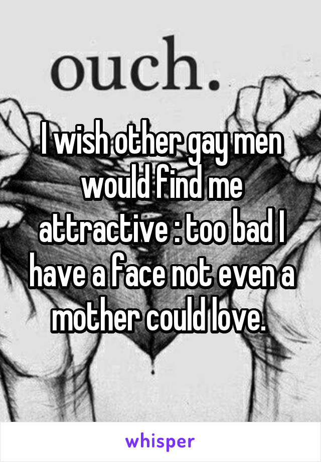 I wish other gay men would find me attractive :\ too bad I have a face not even a mother could love.