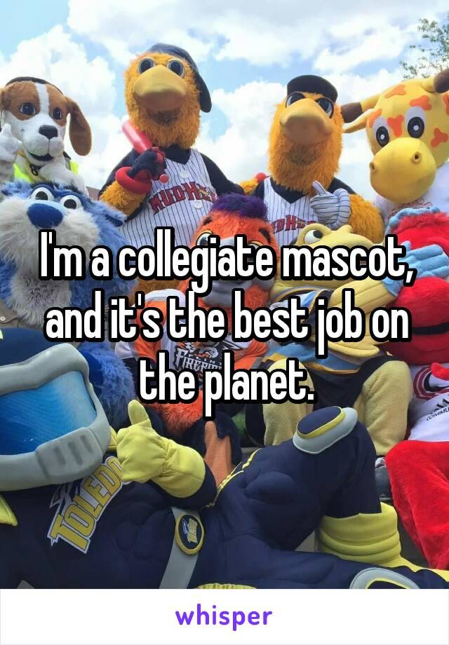I'm a collegiate mascot, and it's the best job on the planet.
