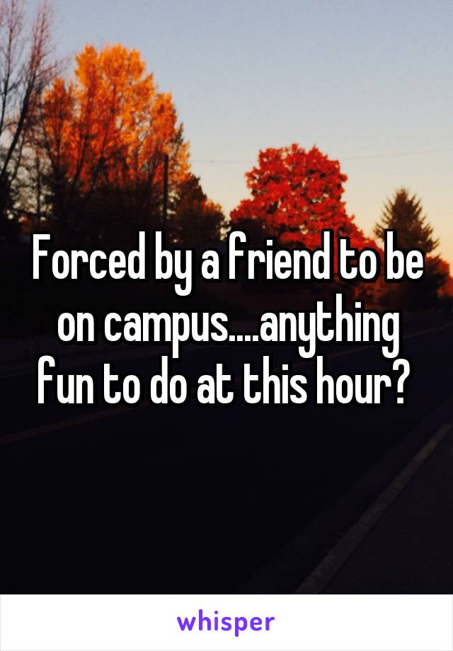 Forced by a friend to be on campus....anything fun to do at this hour?