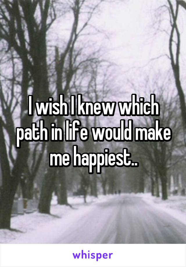 I wish I knew which path in life would make me happiest..