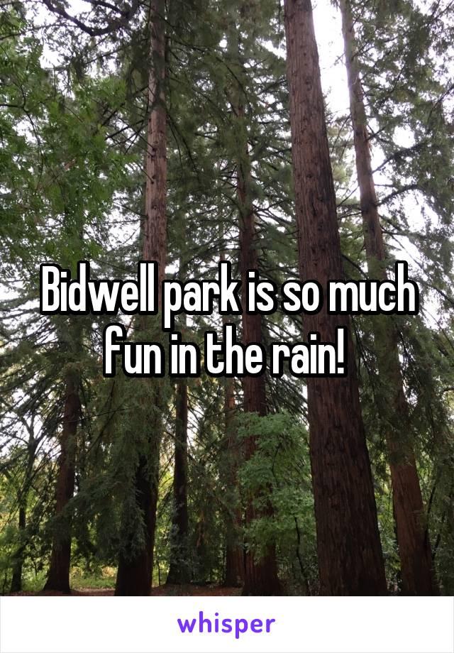 Bidwell park is so much fun in the rain!