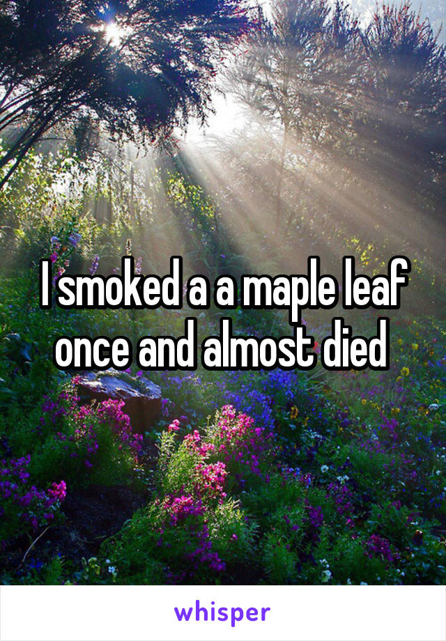 I smoked a a maple leaf once and almost died