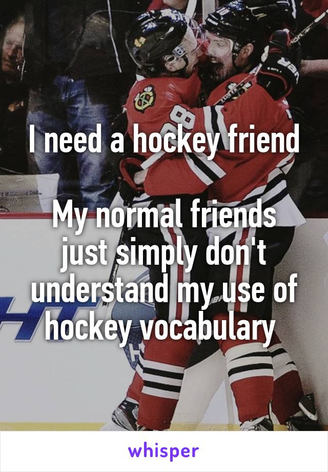 I need a hockey friend  My normal friends just simply don't understand my use of hockey vocabulary