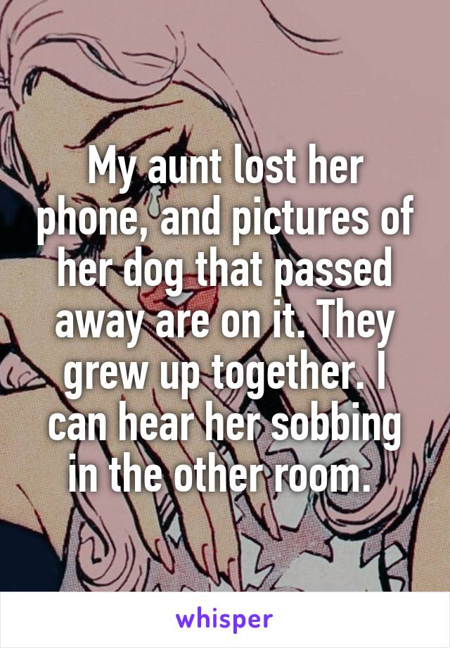 My aunt lost her phone, and pictures of her dog that passed away are on it. They grew up together. I can hear her sobbing in the other room.