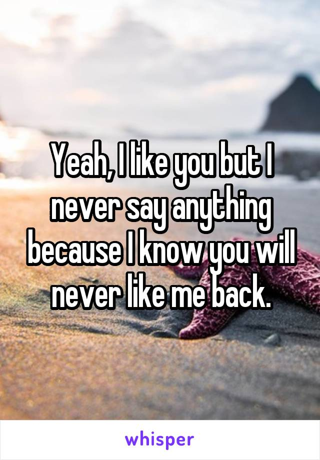 Yeah, I like you but I never say anything because I know you will never like me back.