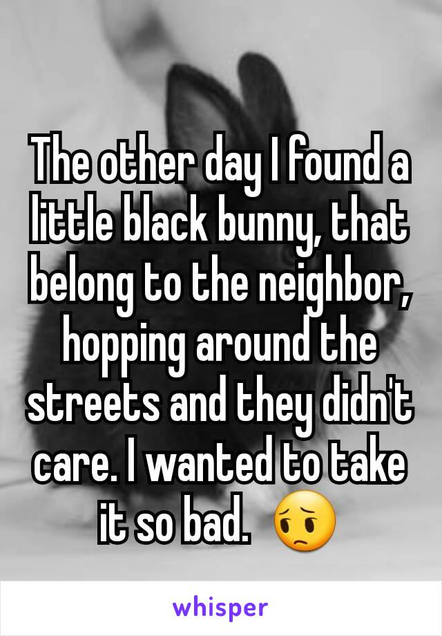 The other day I found a little black bunny, that belong to the neighbor, hopping around the streets and they didn't care. I wanted to take it so bad.  😔