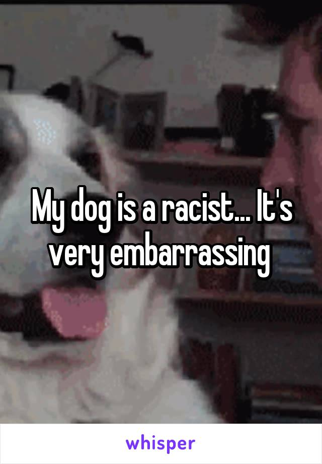 My dog is a racist... It's very embarrassing