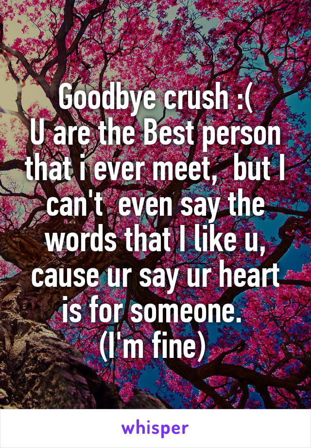 Goodbye crush :( U are the Best person that i ever meet,  but I can't  even say the words that I like u, cause ur say ur heart is for someone.  (I'm fine)
