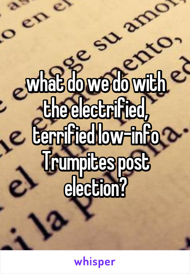 what do we do with the electrified, terrified low-info Trumpites post election?