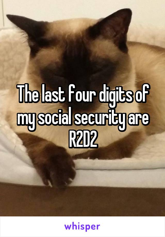 The last four digits of my social security are R2D2