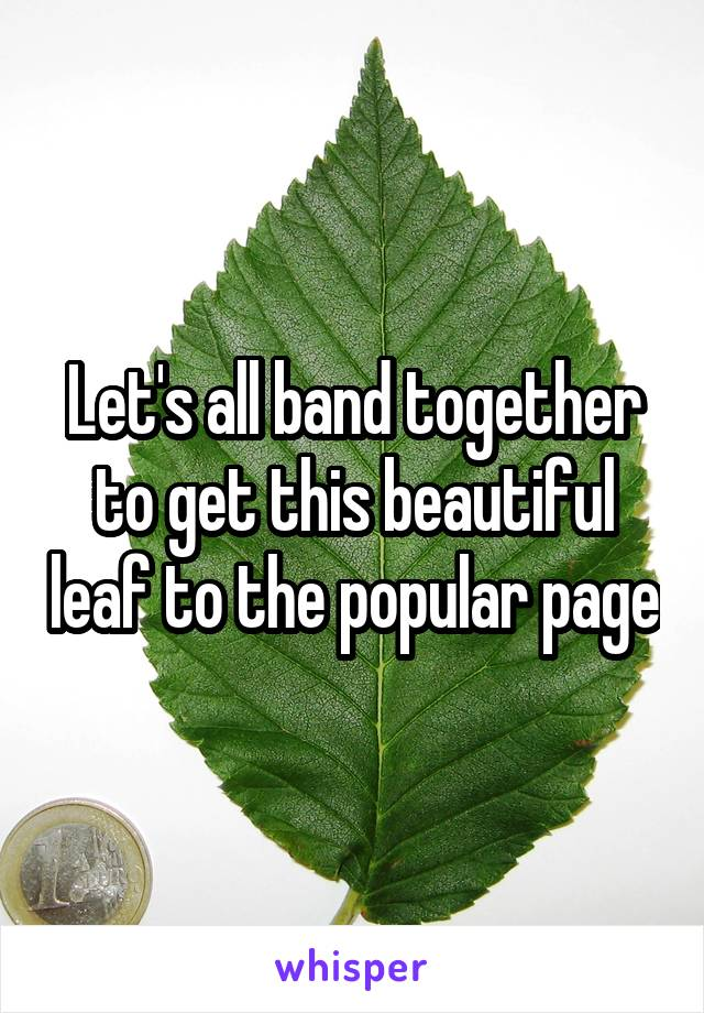Let's all band together to get this beautiful leaf to the popular page