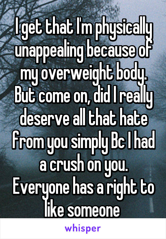 I get that I'm physically unappealing because of my overweight body. But come on, did I really deserve all that hate from you simply Bc I had a crush on you. Everyone has a right to like someone