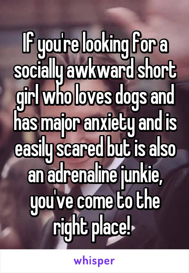 If you're looking for a socially awkward short girl who loves dogs and has major anxiety and is easily scared but is also an adrenaline junkie, you've come to the right place!