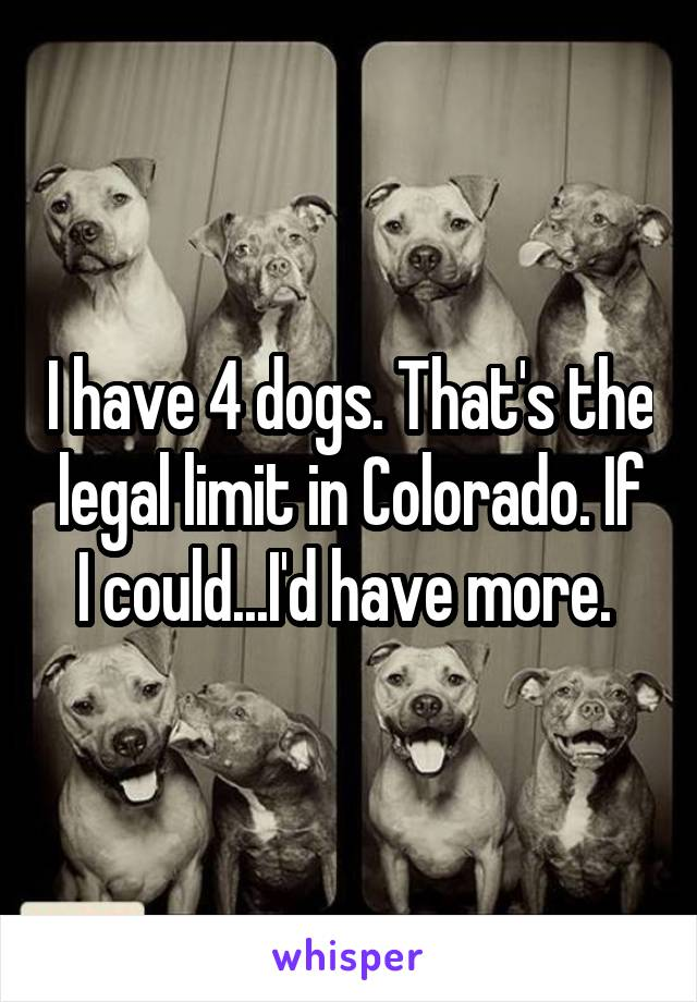 I have 4 dogs. That's the legal limit in Colorado. If I could...I'd have more.