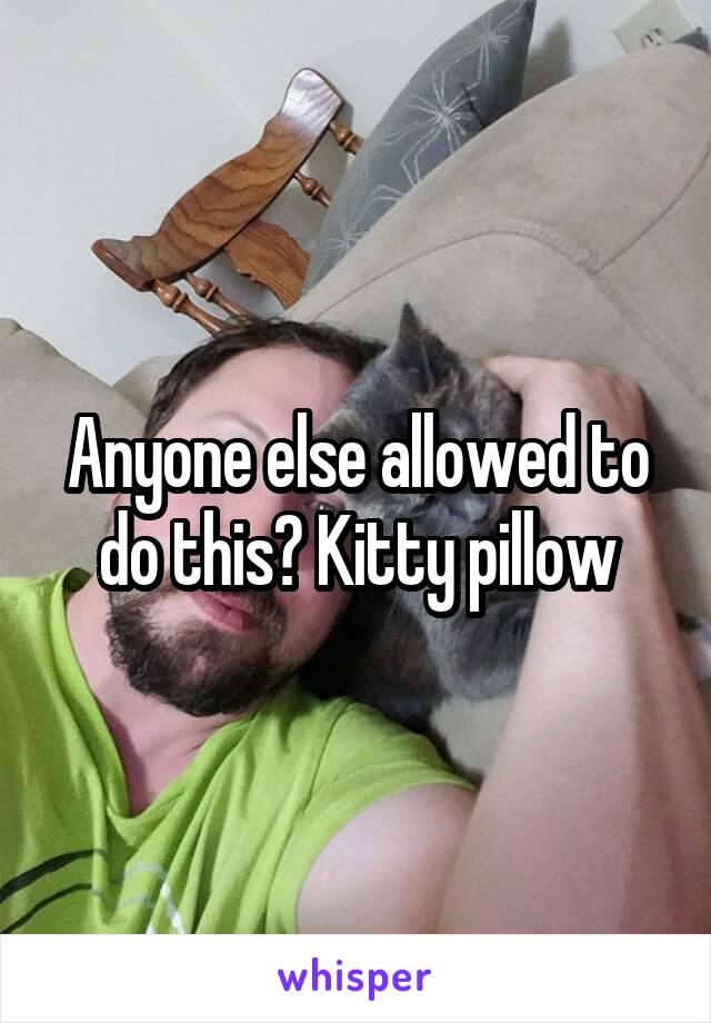 Anyone else allowed to do this? Kitty pillow