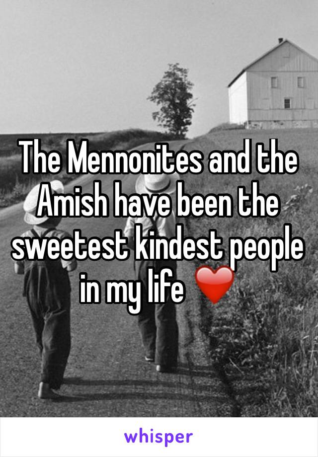 The Mennonites and the Amish have been the sweetest kindest people in my life ❤️