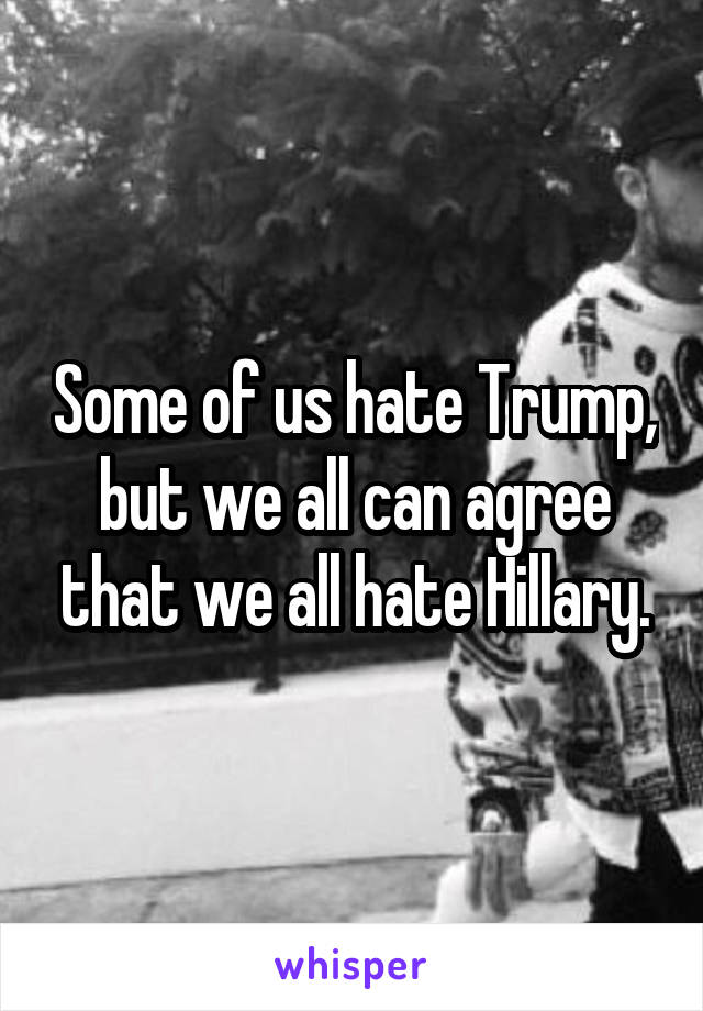 Some of us hate Trump, but we all can agree that we all hate Hillary.