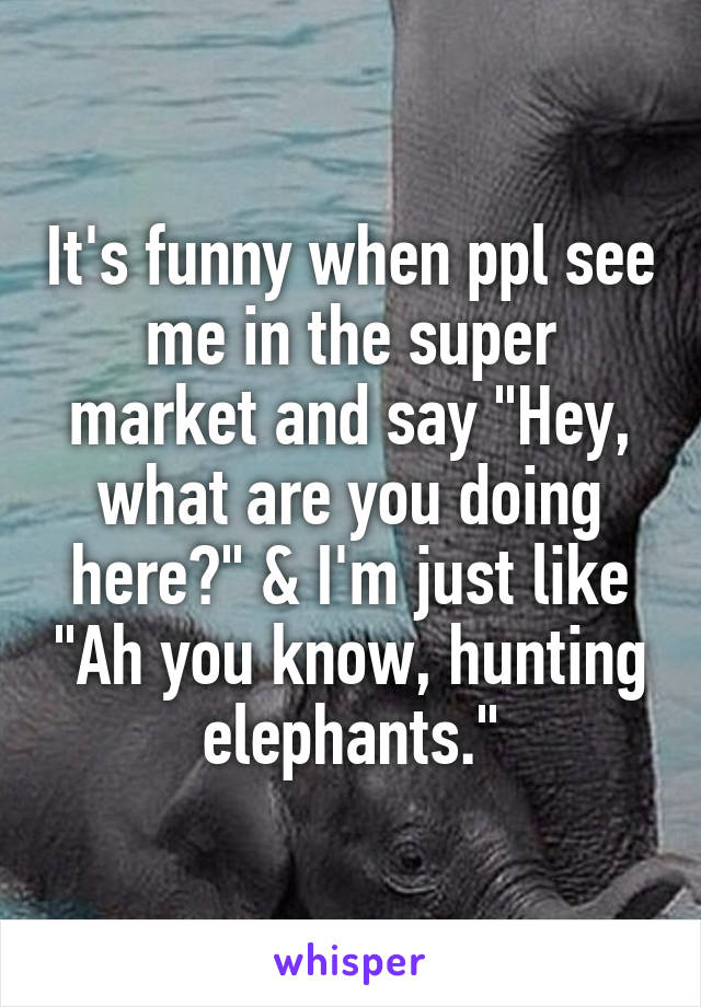 """It's funny when ppl see me in the super market and say """"Hey, what are you doing here?"""" & I'm just like """"Ah you know, hunting elephants."""""""