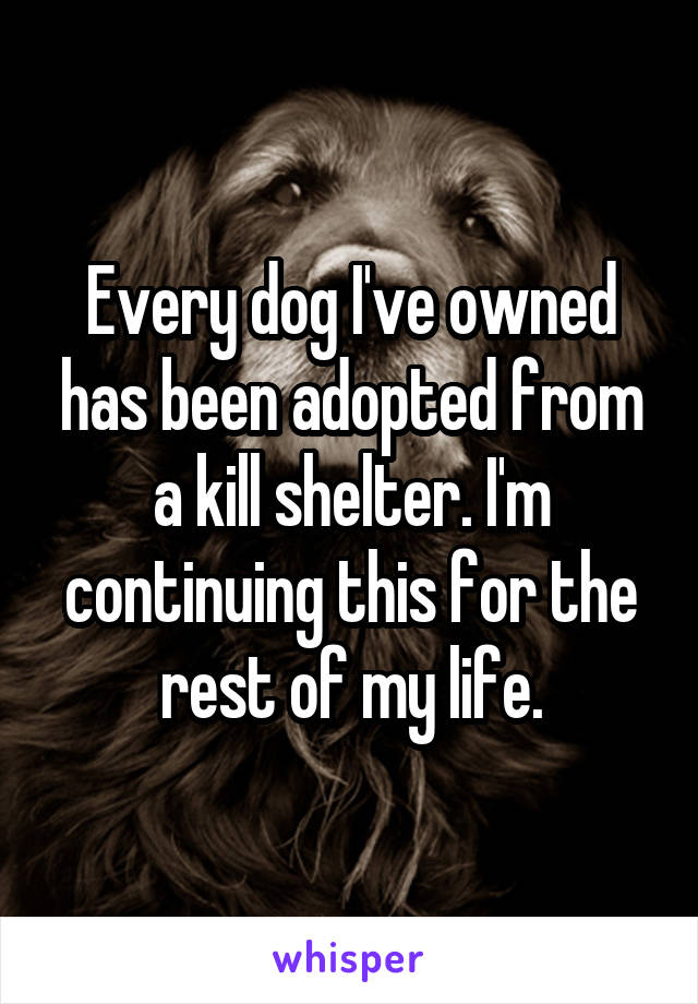 Every dog I've owned has been adopted from a kill shelter. I'm continuing this for the rest of my life.