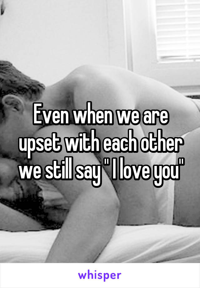 "Even when we are upset with each other we still say "" I love you"""
