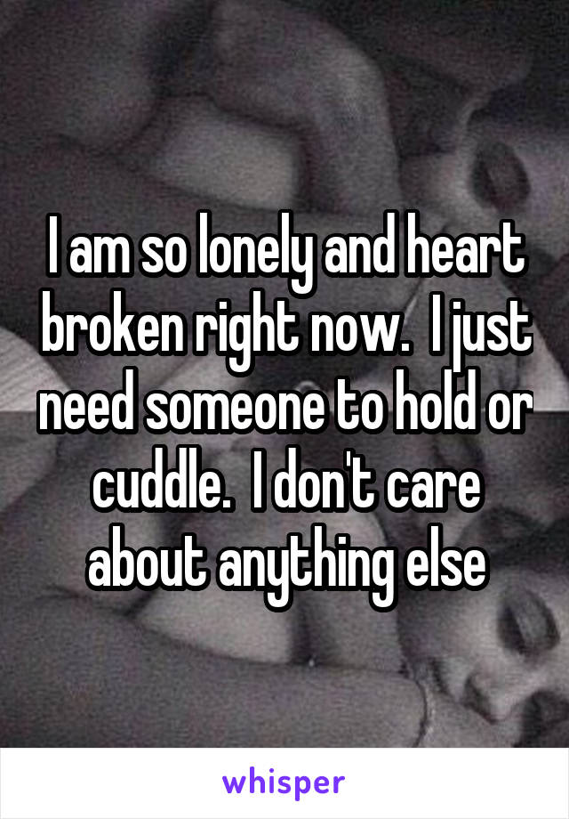 I am so lonely and heart broken right now.  I just need someone to hold or cuddle.  I don't care about anything else