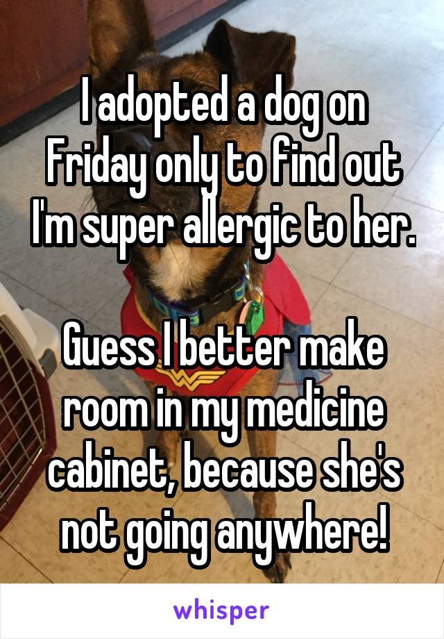 I adopted a dog on Friday only to find out I'm super allergic to her.  Guess I better make room in my medicine cabinet, because she's not going anywhere!