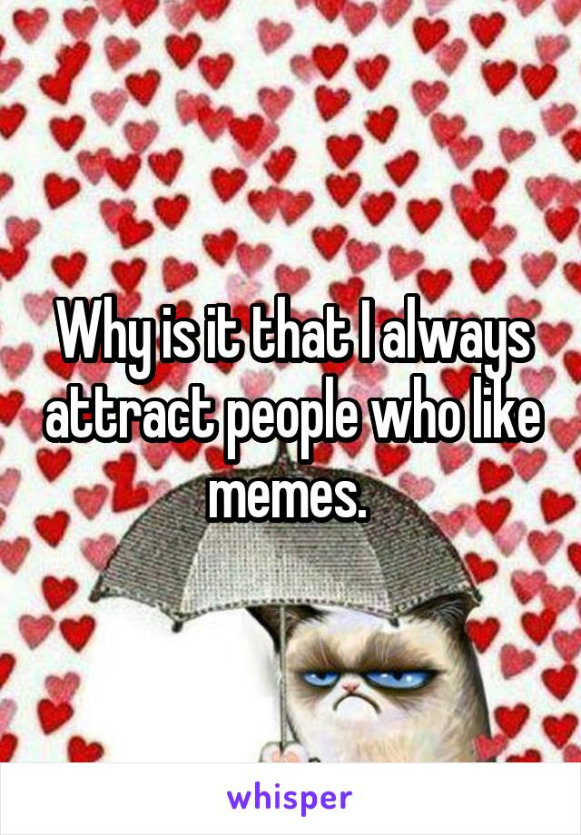 Why is it that I always attract people who like memes.