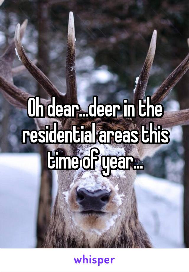 Oh dear...deer in the residential areas this time of year...