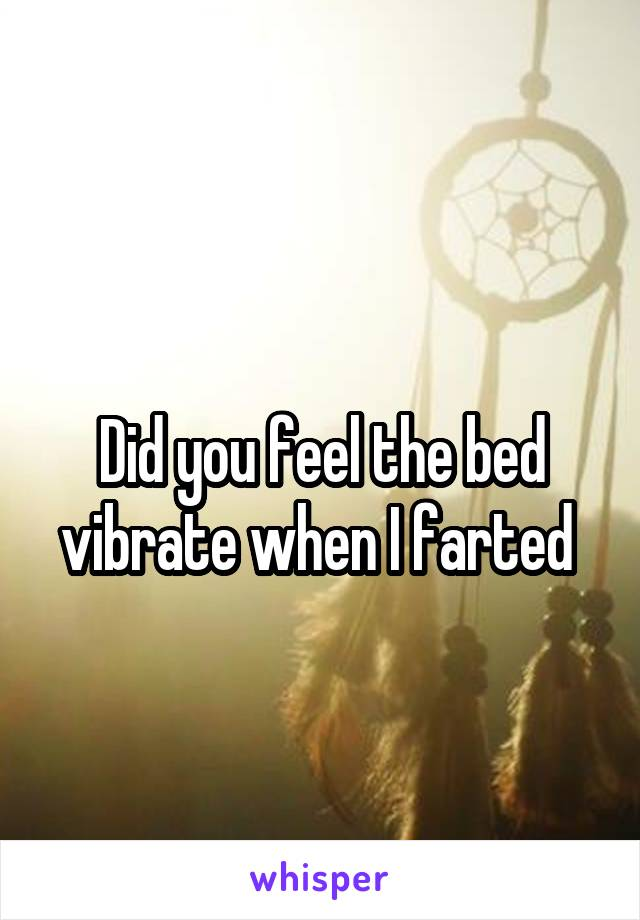 Did you feel the bed vibrate when I farted