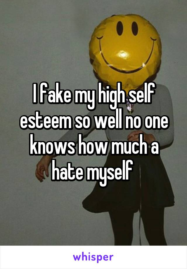 I fake my high self esteem so well no one knows how much a hate myself