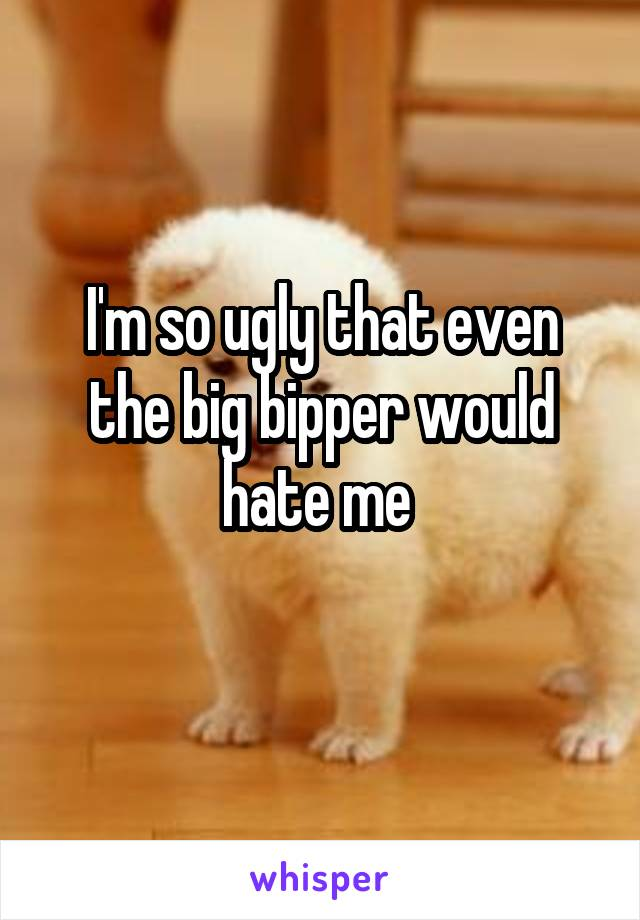 I'm so ugly that even the big bipper would hate me