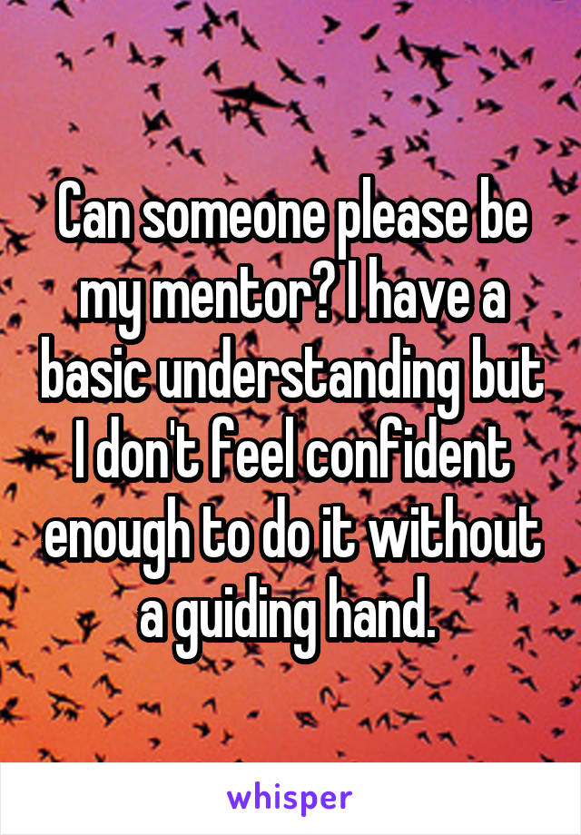 Can someone please be my mentor? I have a basic understanding but I don't feel confident enough to do it without a guiding hand.