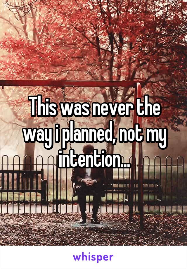 This was never the way i planned, not my intention...