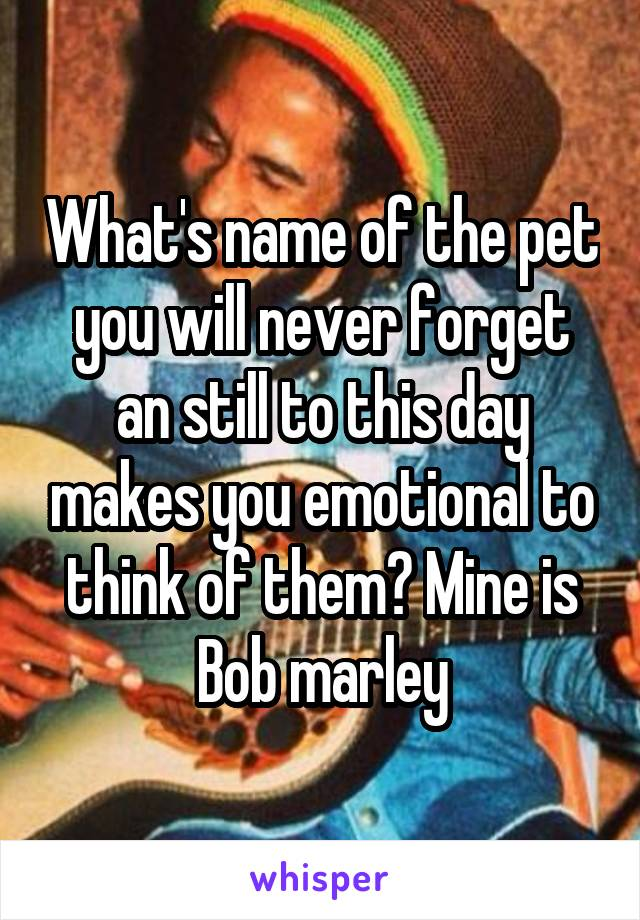 What's name of the pet you will never forget an still to this day makes you emotional to think of them? Mine is Bob marley