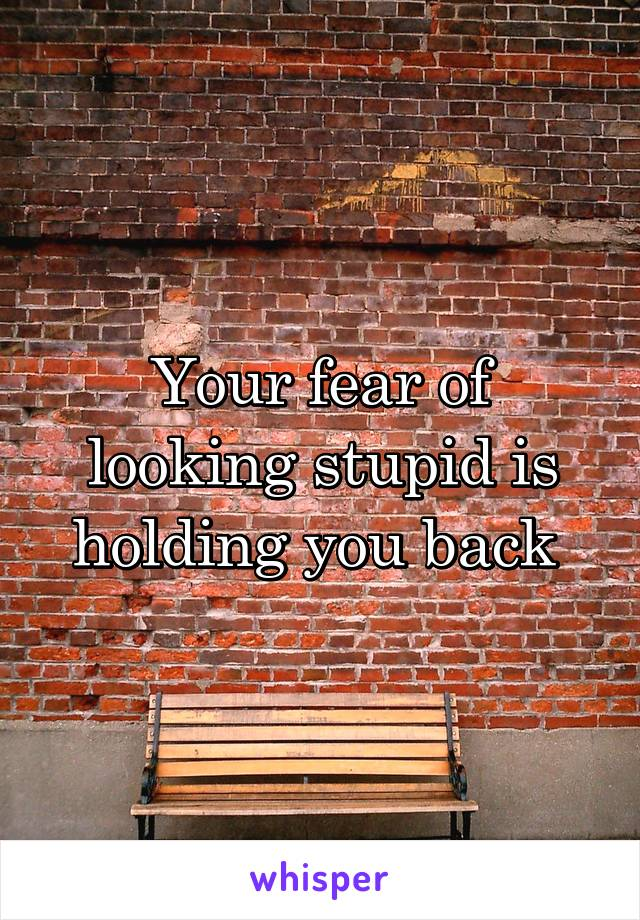 Your fear of looking stupid is holding you back
