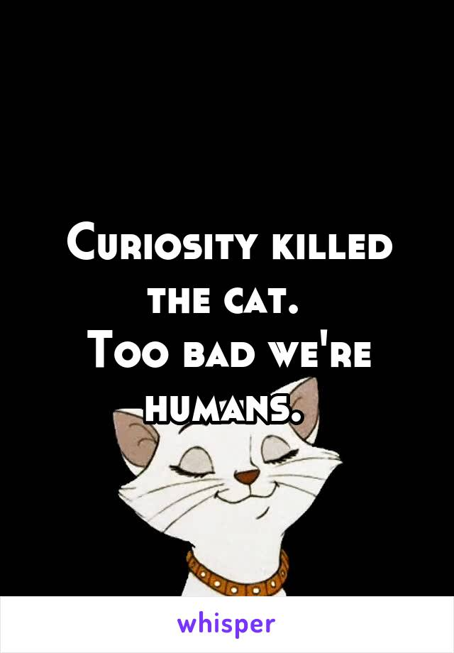 Curiosity killed the cat.  Too bad we're humans.