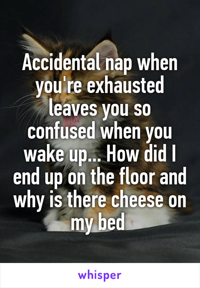 Accidental nap when you're exhausted leaves you so confused when you wake up... How did I end up on the floor and why is there cheese on my bed