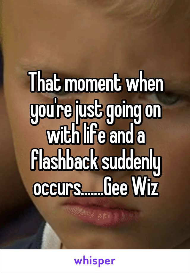 That moment when you're just going on with life and a flashback suddenly occurs.......Gee Wiz