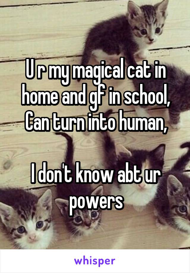 U r my magical cat in home and gf in school, Can turn into human,  I don't know abt ur powers