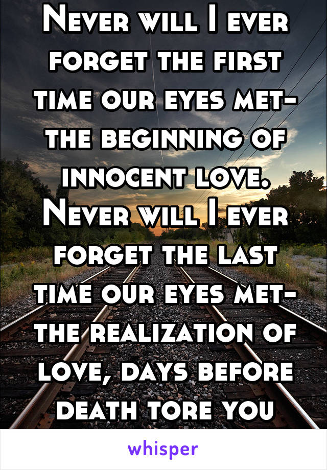 Never will I ever forget the first time our eyes met- the beginning of innocent love. Never will I ever forget the last time our eyes met- the realization of love, days before death tore you away.