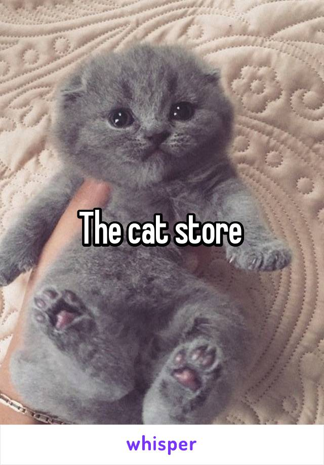 The cat store