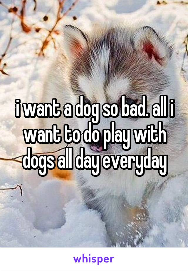 i want a dog so bad. all i want to do play with dogs all day everyday