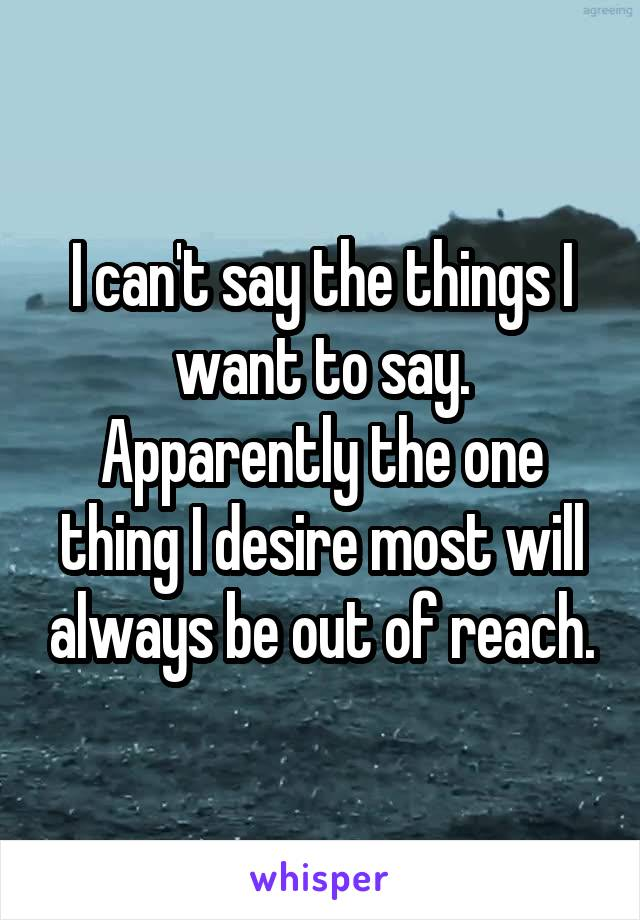 I can't say the things I want to say. Apparently the one thing I desire most will always be out of reach.