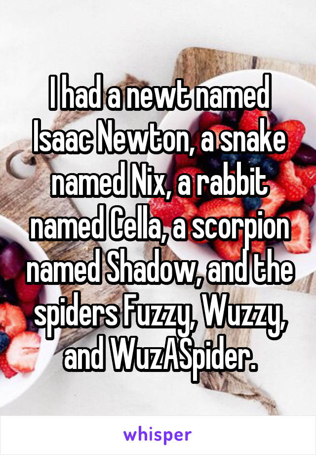 I had a newt named Isaac Newton, a snake named Nix, a rabbit named Cella, a scorpion named Shadow, and the spiders Fuzzy, Wuzzy, and WuzASpider.