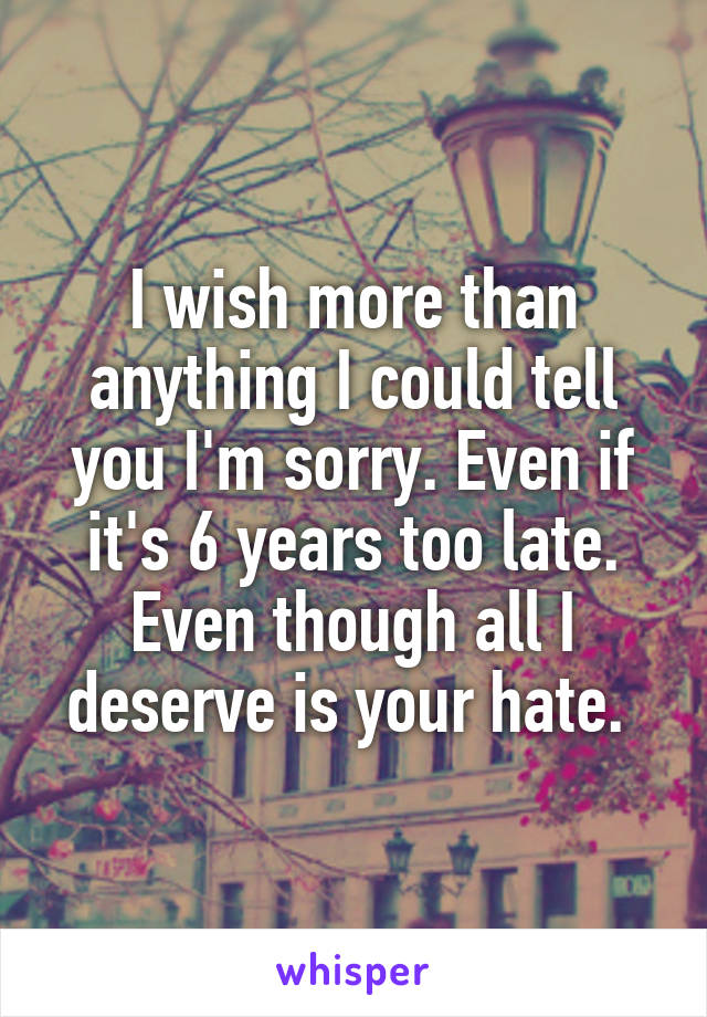 I wish more than anything I could tell you I'm sorry. Even if it's 6 years too late. Even though all I deserve is your hate.