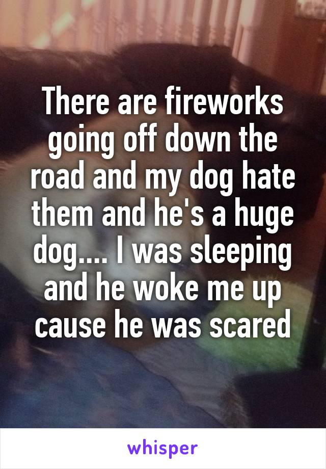 There are fireworks going off down the road and my dog hate them and he's a huge dog.... I was sleeping and he woke me up cause he was scared