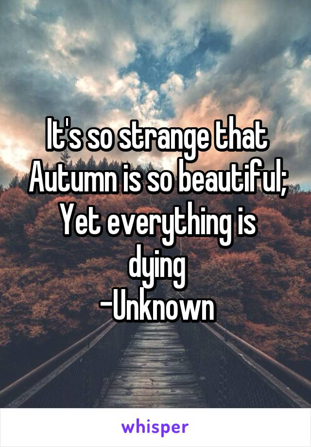 It's so strange that Autumn is so beautiful; Yet everything is dying -Unknown