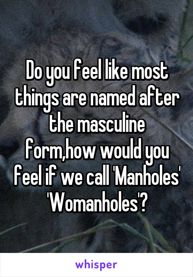 Do you feel like most things are named after the masculine form,how would you feel if we call 'Manholes' 'Womanholes'?
